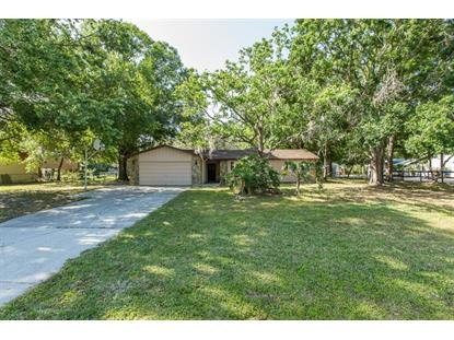 6906 COLLINGSWOOD CT, New Port Richey, FL