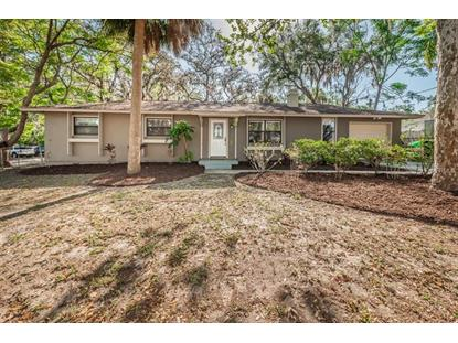 312 POWHATAN ST, Safety Harbor, FL