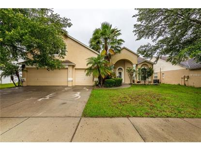 9718 MARY ROBIN DR Riverview, FL MLS# U8004577