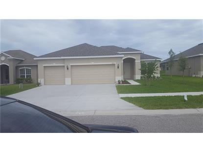 19898 BLUEBIRD MEADOW DR N Lutz, FL MLS# U8006268