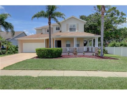 1895 WISCONSIN AVE, Palm Harbor, FL