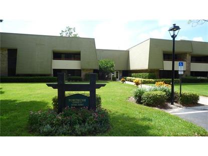 36750 US HIGHWAY 19 N #17211, Palm Harbor, FL