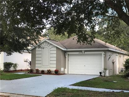 14957 DEER MEADOW DR Lutz, FL MLS# U8065666