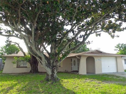 4721 DAPHNE ST New Port Richey, FL MLS# U8089867