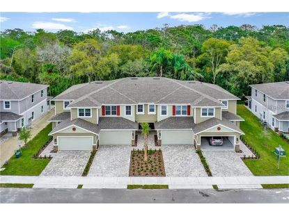 5352 RIVERWALK PRESERVE DR New Port Richey, FL MLS# U8100476