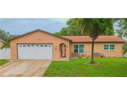7917 ROYAL STEWART DR New Port Richey, FL MLS# U8101390