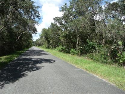 RIDGE BLVD N Deland, FL MLS# V4717142