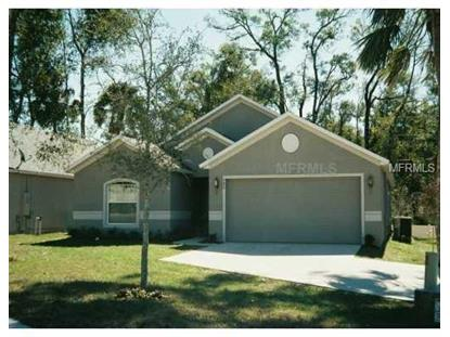 680 BLUE PARK RD, Orange City, FL