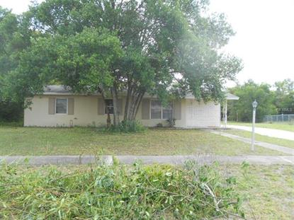 1345 ROCK HILL Deltona, FL MLS# V4904572