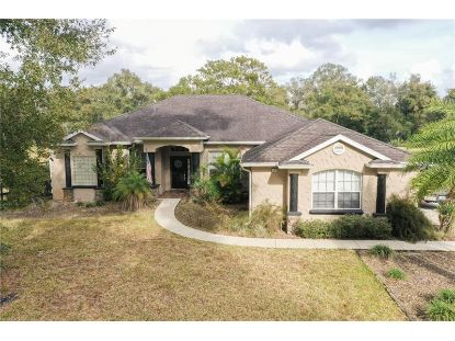 2015 HAWK HAVEN TRL Deland, FL MLS# V4917066