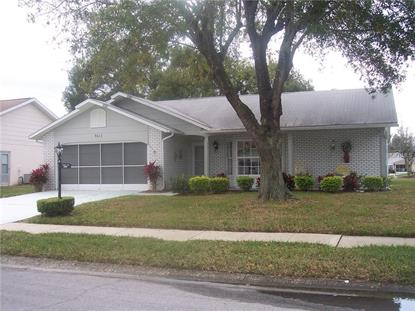 Homes For Sale Heritage Lakes New Port Richey Fl