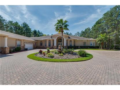 9402 SAND PINES CT, Weeki Wachee, FL