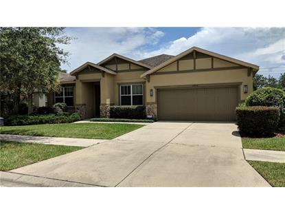 15715 STARLING WATER DR Lithia, FL MLS# W7801506