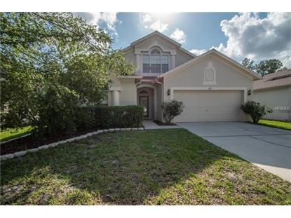 6713 BLUFF MEADOW CT, Wesley Chapel, FL
