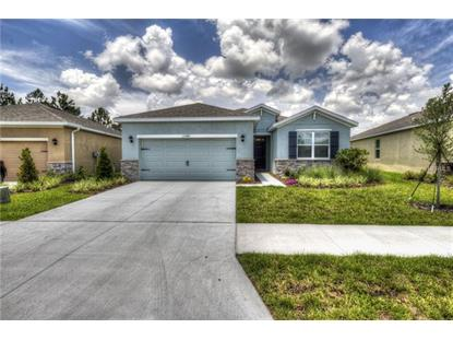 13543 PADDINGTON WAY, Spring Hill, FL
