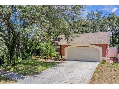 5356 JOBETH DR New Port Richey, FL MLS# W7823133