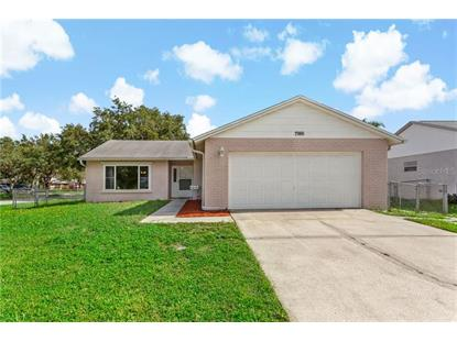 7986 KNOX LOOP New Port Richey, FL MLS# W7824542