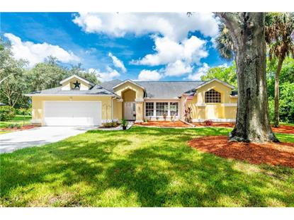 379 FLORIAN WAY Spring Hill, FL MLS# W7824578