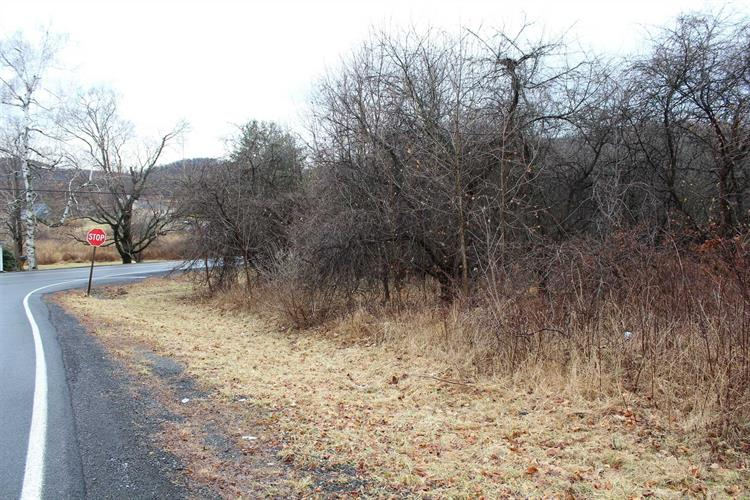 MILTON TURNPIKE, Mount Tremper, NY 12457