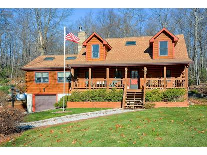 505 E MOUNTAIN NORTH RD Philipstown, NY MLS# 348880
