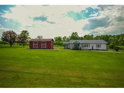 301 FOX HILL RD Greenville, NY MLS# 351922