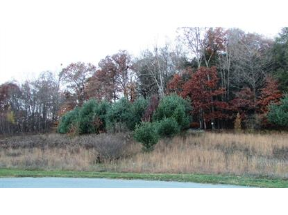 MEADOW VIEW - LOT 12 CT, La Grange, NY