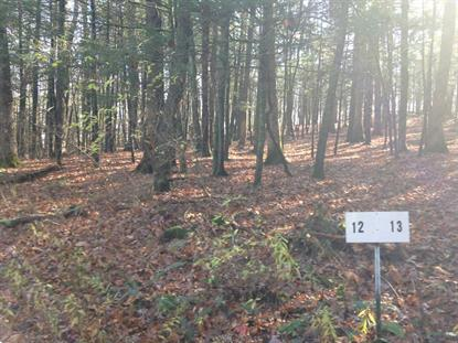 LOT #12 TROUTBECK CR RD Amenia, NY MLS# 356658