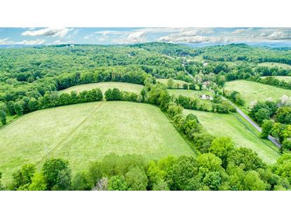 DUELL ROAD Stanfordville, NY MLS# 361710
