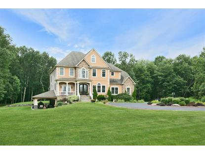 10 TODD HILL ROAD La Grange, NY MLS# 364049