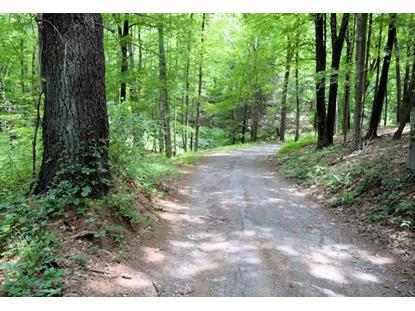 COYOTE RIDGE RD Hyde Park, NY MLS# 375623