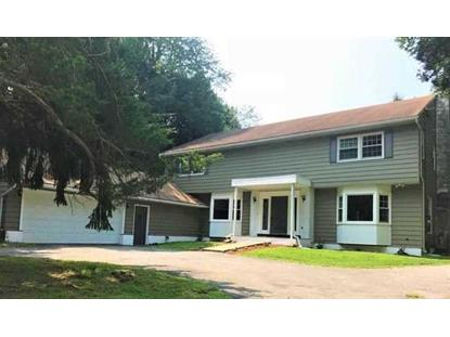 68 KING GEORGE RD Poughkeepsie, NY MLS# 377639