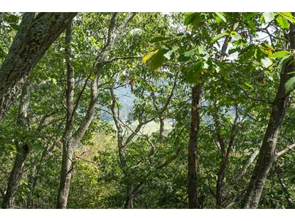 0 CART RD  Dover Plains, NY MLS# 380124