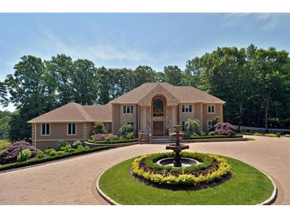 215 Doe Trail, Morganville, NJ