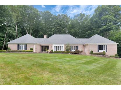 16 Deep Wood Lane, Colts Neck, NJ