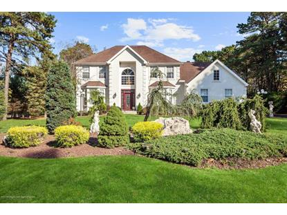 48 Green Tree Drive, Jackson, NJ
