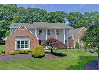 20 Chestnut Drive, Colts Neck, NJ