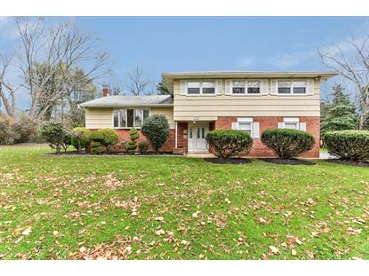 178 Brittany Drive Freehold, NJ MLS# 21844802