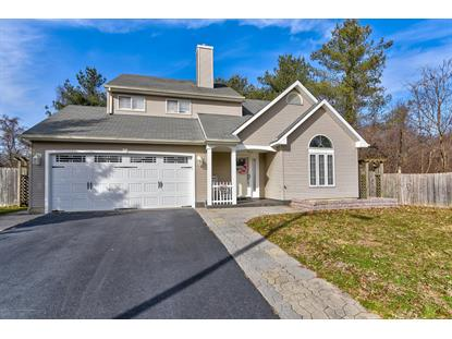 10 Longbrook Lane Freehold, NJ MLS# 21901763