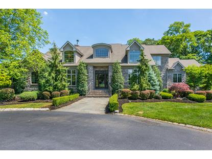 1 Moonlight Drive Colts Neck, NJ MLS# 22019948
