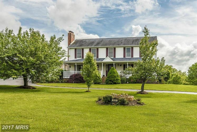 singles in ijamsville Search ijamsville, maryland real estate listings & new homes for sale in ijamsville, md find ijamsville houses, townhouses, condos, & properties for sale at weichertcom.