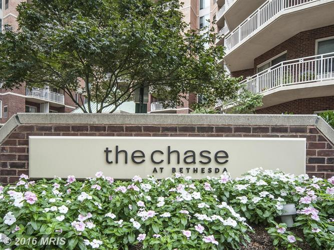 7500 WOODMONT AVE #S1101, Bethesda, MD 20814