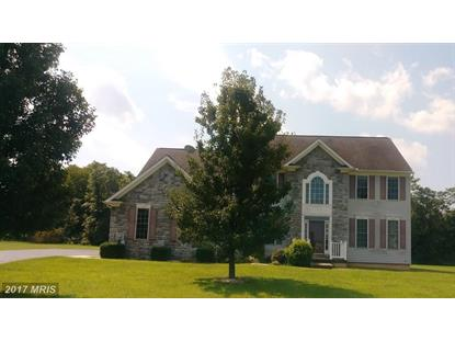 219 DORCHESTER DR Falling Waters, WV MLS# BE10039959