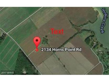 HORNS POINT RD Cambridge, MD MLS# DO8261988
