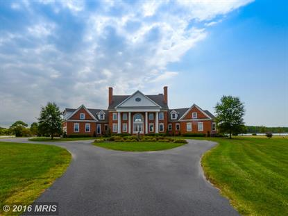 5559 CASSONS NECK RD Cambridge, MD MLS# DO9777284