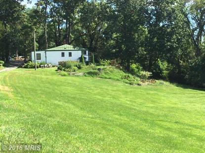 3277 FORTUNE MOUNTAIN RD, Marshall, VA