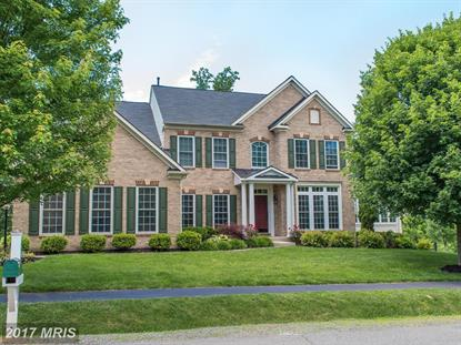 6360 REDWINGED BLACKBIRD DR, Warrenton, VA