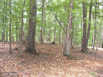 46 ACRES NETTLE LN Winchester, VA MLS# FV10003449