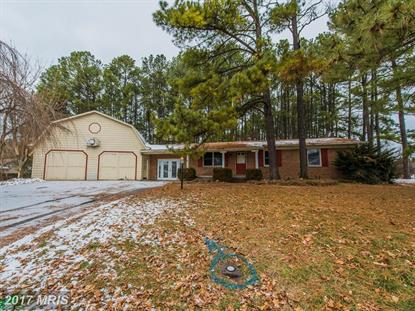 116 AMHERST CT Stephens City, VA MLS# FV9834750
