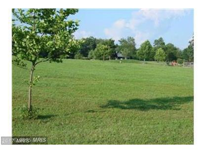 LOT 25 BUNCHBERRY RIDGE CT Stephens City, VA MLS# FV9850937