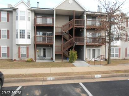113 TIMBERLAKE TER #7 Stephens City, VA MLS# FV9862024